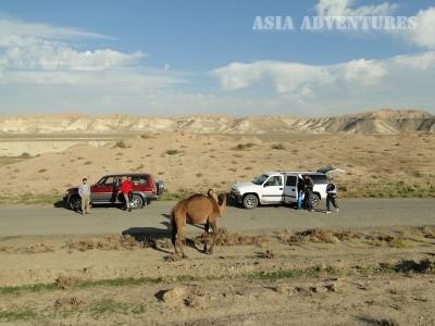 Dehistan, Turkmenistan