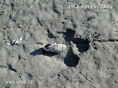 Плато Динозавров, Ходжапиль
