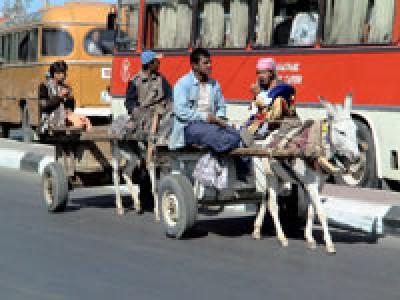 На улице Самарканда, Узбекистан