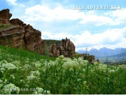 Nature Reserves, National Parks and Other Conservation Areas in the Territory of Uzbekistan
