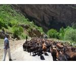 Неизвестный Узбекистан. Сельская жизнь и уникальная природа.