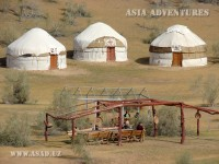 Tours to yurt camp