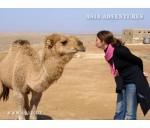 Узбекистан –восточная сказка. История, культура и приключения в пустыне.